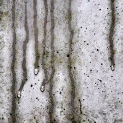 Luftentfeuchter Gegen Schimmel : wenn r ume zu feucht sind luftentfeuchter gegen schimmel garten haus ~ Watch28wear.com Haus und Dekorationen