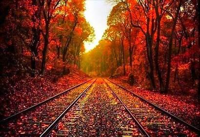 Fall Backgrounds Pretty Desktop Autumn Wallpapers Background