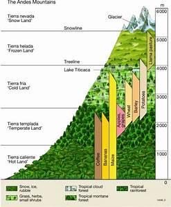 Maps - The Andes  U2013 Altitudinal Zonation