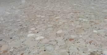 Concrete Floor Polisher Photo