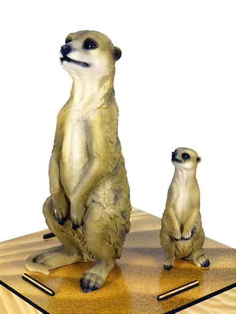 meerkat small animals