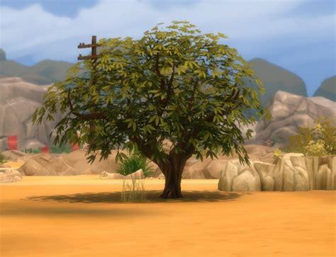 3 desert plants sims 4 liberated desert plants