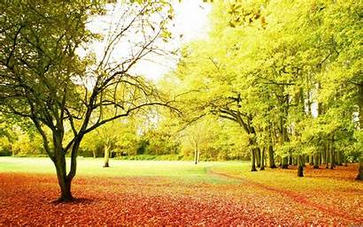 Nature Background Backgrounds Wallpapers Landscape Wallpapertag Cool