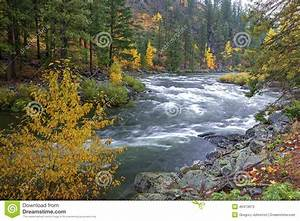 Wenatchee River rapids. stock image. Image of colour ...