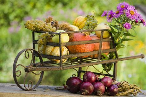 Garten Abräumen Im Herbst by Herbstdekoration 183 Ratgeber Haus Garten
