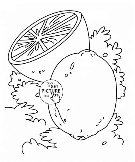 Fruit Printable Coloring Pages Printable Coloring Page Lime Fruit Coloring Page For Fruits Coloring Pages