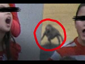 NEW !!! Strange Alien Demon Creature Sighting At Christmas ...