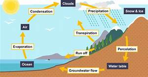 You Learn Something New Every Day  The Water Cycle