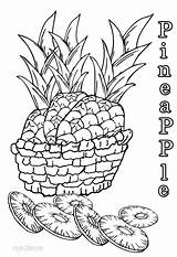 Pineapple Coloring Pages Printable Children Fruits Cool2bkids Pineapples Fruit Tart sketch template