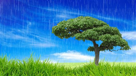 background blue sky  green grass hd background youtube