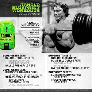 Musclepharm U00ae On Twitter   U0026quot  Mp Workout Of The Day  Arnold Schwarzenegger Blueprint To Cut Arm