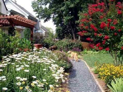 Tips For Pet-friendly Garden