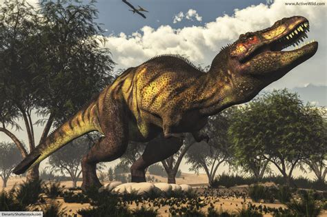 Cretaceous Period Dinosaurs. List Of Dinosaurs Of The