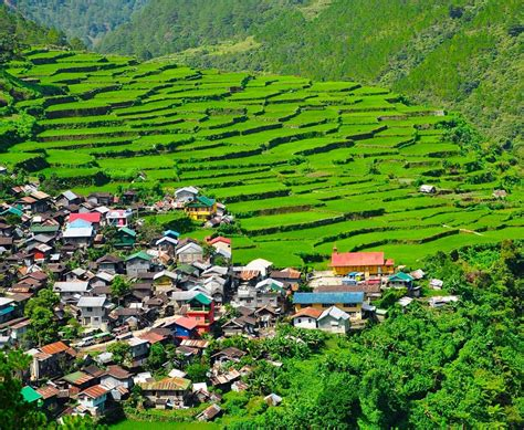 Bontoc  Rice Terraces, Hiking And Cool Temperatures