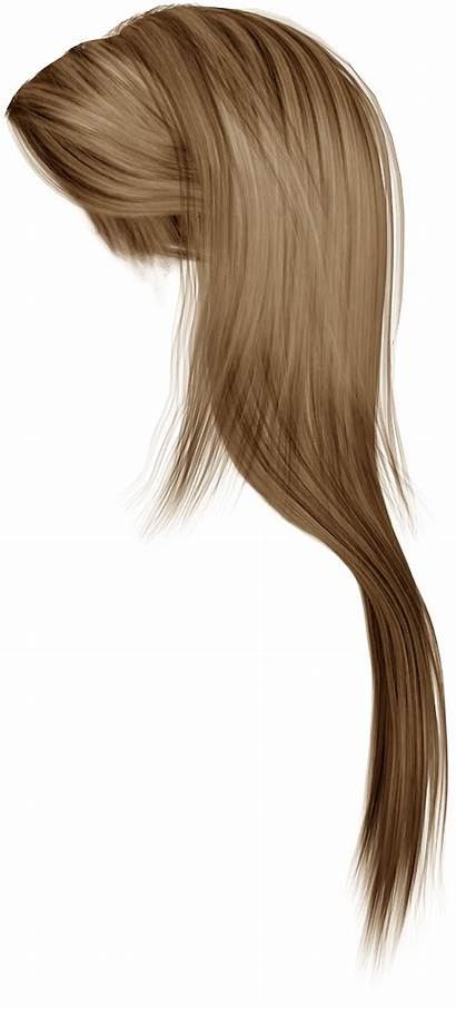 Hair Transparent Clipart Background Hairstyle Woman Brown