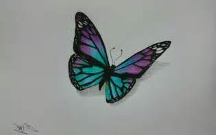 Colored Pencil Drawings of Butterflies