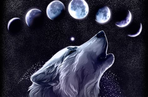 Wolf Drawing Wallpaper by Wolf Hd Wallpaper Background Image 3500x2304 Id