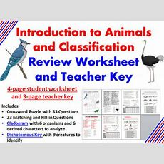 Intro To Animals And Classi By Biology Zoology Forensic Science  Teachers Pay Teachers