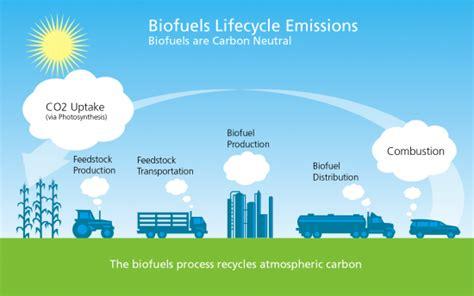 Scrutinizing The Logic On Biofuels