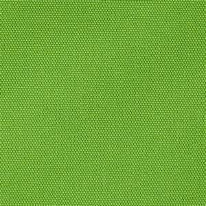 Kaufman Big Sur Canvas Solid Muscat Green - Discount