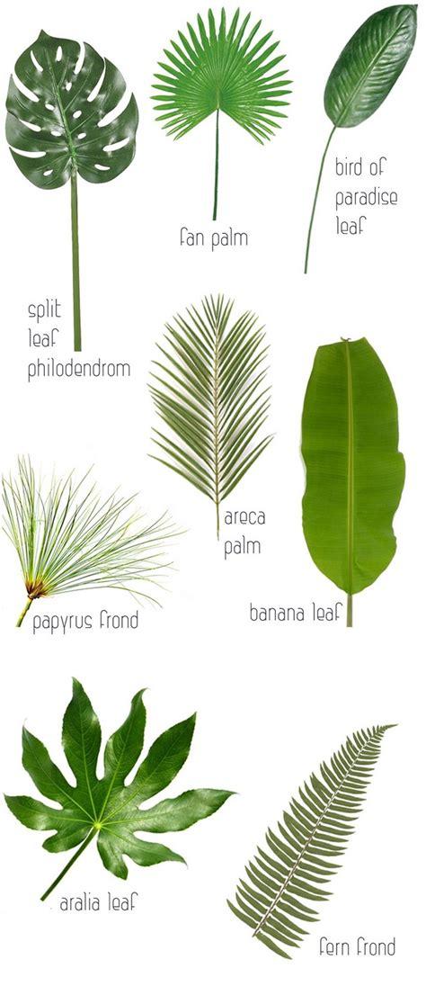 Home Decor Ideas Use Tropical Leaves