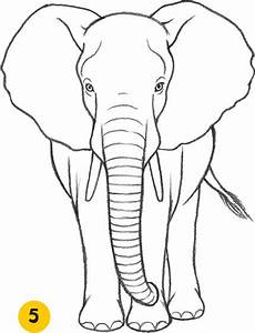 how to draw an elephant - Google Search | Watercolor ...