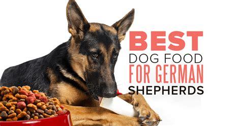 dog food   german shepherd sheppedcom