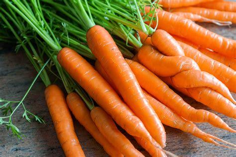 que cuisiner avec des carottes vidéo cuisson des carottes sous vide à basse température