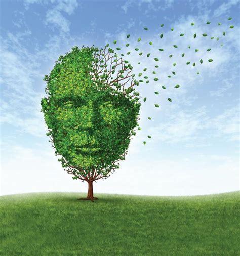 rust dr stevic lori dementia presented tag expert
