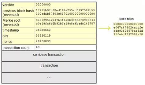 In 2009, bitcoin was the first cryptocurrency to adopt the proof of work protocol to verify transactions on the network. What Is SHA-256 And How Is It Related to Bitcoin? - Mycryptopedia