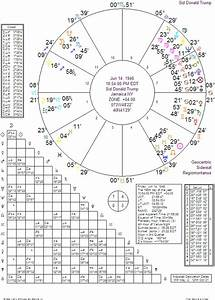 Koch Astrology Chart Chart Service Samples