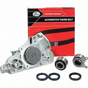 Timing Belt Kit  U0026 Water Pump    Ford Laser Kn Kq Zm 1 6l