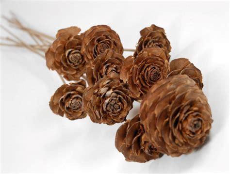 cedar wood roses floral picks