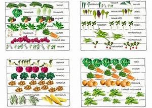Gemüsegarten Anlegen Beispiele : 14 besten hochbeet bilder auf pinterest garten terrasse mein garten und sch ner garten ~ Watch28wear.com Haus und Dekorationen