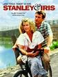 Stanley & Iris (1990) - Martin Ritt   Synopsis ...