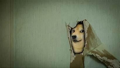 Memes Doge Backgrounds Wallpapers Desktop Mocah Mobile