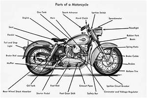 Honda Motorcycle Diagram