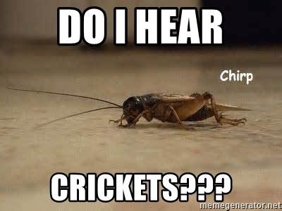 Crickets Chirping Meme - do i hear crickets crickets chirping meme generator