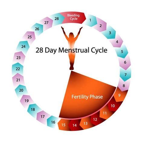 days period fertile quora