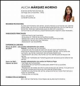 Curriculum Vitae Administrativo