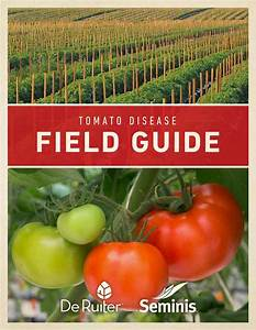 Tomato Disease Guide By Suresh L M