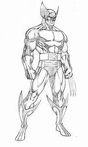 Best 25 Wolverine Tattoo Ideas On Pinterest A Wolverine