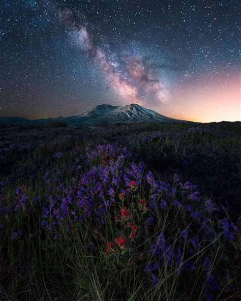 Night Scape Nature Flowers Mountain Sky Milky Way