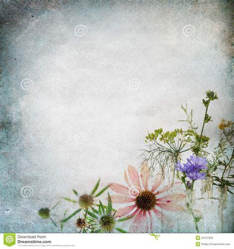 vintage shabby chic background stock image image