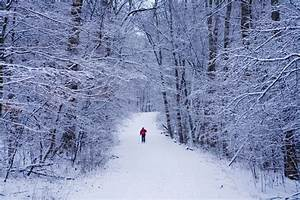 Things to Do in Illinois This Winter