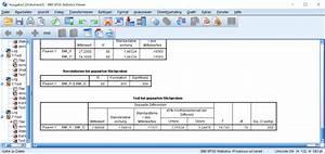 Mittelwert Berechnen Spss : t test mit spss die grundlagen statistik verst ndlich ~ Themetempest.com Abrechnung