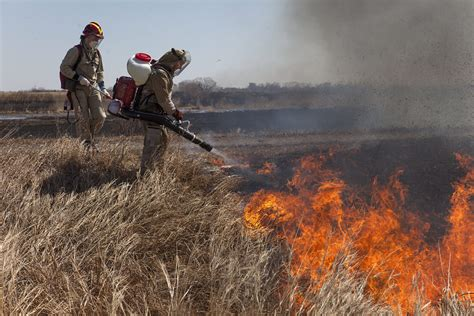 russias devastating wildfires mapped unearthed