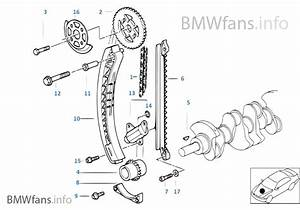 Timing And Valve Train