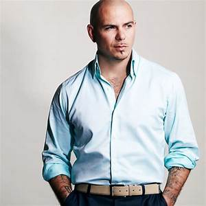 Pitbull To Receive Star On Hollywood Walk Of Fame - That ...  Pitbull