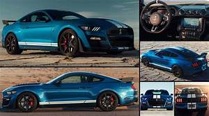 Ford Mustang Shelby GT500 (2020) - pictures, information & specs